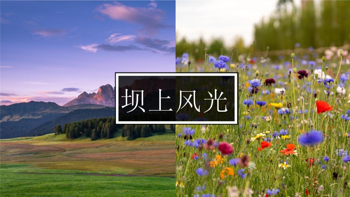草原迷踪_20200806175748_05